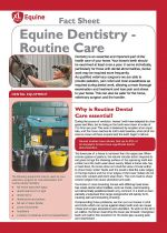 Dental care  - Routine