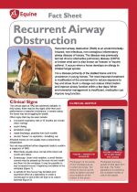 Recurrent airway obstruction (RAO)